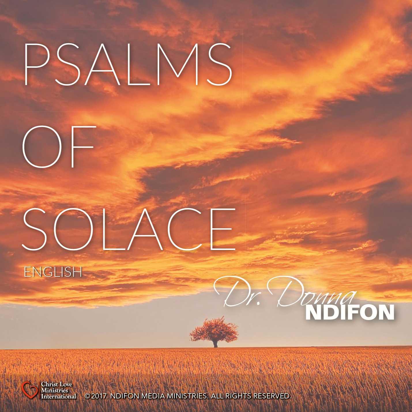 Psalms of Solace